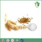 ハーブのエキスか米糠のエキスガンマのOryzanol 99%
