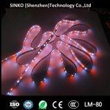 Indicatore luminoso di striscia flessibile impermeabile di 5050 RGB LED per natale, DJ, barra, discoteca di esposizione di eventi