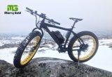 후방 훈족 모터 250W 뚱뚱한 타이어 눈 산 바닷가 전기 자전거