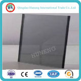 vidrio teñido gris euro de 5m m hecho en China
