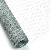 Мелкоячеистая сетка поставщика 25mm изготовления Китая гальванизированная отверстием шестиугольная (CW)