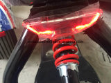 60V 20ahのリチウム電池が付いている都市ココヤシのスクーターの2016の最も熱いSGS Verfied