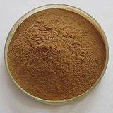 Extrato de alcachofra de alta qualidade 2%-5%Cynarin para complemento alimentar