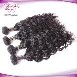 Extensões naturais brasileiras Rated superiores do cabelo Curly de onda de oceano