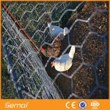 六角形の金網の鶏の養鶏場の塀