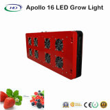 LED de alta potencia crecen Apolo 16 para cultivo comercial