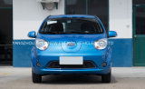 Automobile elettrica calda di prezzi di fabbrica di vendita con l'alta qualità