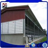 Tettoia dell'azienda agricola di pollo del pollame della struttura d'acciaio dell'ampia luce