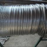 304L継ぎ目が無いステンレス鋼のコイル状の管