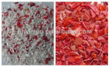 Vsee RGB 플라스틱 재생 기계 빨간 분쇄된 플라스틱 색깔 분류하는 사람