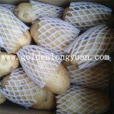 Китайский свежий цвет желтого цвета картошки