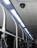Illumination de chariot de véhicule (XY-4295)