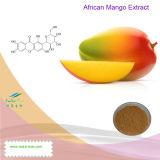 100% натуральные африканского манго извлечения (Mangiferin 20%~95%, 4: 1~20: 1)