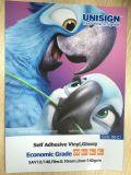Sav12/140 Vinyle auto-adhésif colle blanche