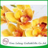 3D Artificial Phalaenopsis Orchid, látex Artificial Flores Orchid