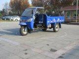 Diesel-geöffnetes motorisiertes Ladung-Dreirad von China