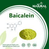 ScutellariaのBaicalensisのエキスBaicalein CAS第491-67-8