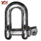 US Type Galvanized D Shackles
