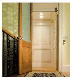 일본 기술 전송자 엘리베이터/주거 엘리베이터의 신제품 별장 엘리베이터는 분해한다 (YDBK-8000)