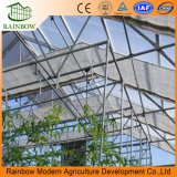 Agricultural를 위한 상업적인 UV Treated Photovoltaic Greenhouse