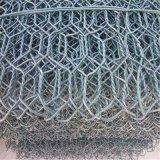 Плетение ячеистой сети PVC Coated шестиугольное (2.0mm до 4.0mm)