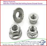 Noix galvanisée de tête de bride de l'acier du carbone M6-M36