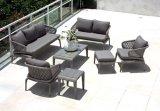 Sofa argenté bon de rotin de Leisuire de fini de noix de Furnir T-013 pour le petit patio ou balcon