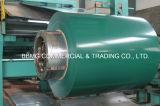 Imprimer/Desinged galvanisé prélaqué bobine en acier recouvert de feuilles de toiture pour l'IBR PPGI