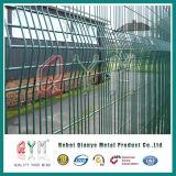 Самый лучший поставщик загородки ячеистой сети цены покрынный PVC гальванизированный