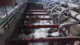 企業の水処理で加えられる膜の生物反応炉のモジュール