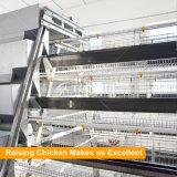 Полноавтоматическое горячего DIP Tianrui гальванизированное тип система клетки цыпленка батареи