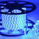 Luzes de LED (LH-5050-220SMD V-60P)
