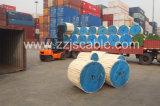 XLPE ha isolato il cavo isolato spese generali di alluminio ambientali 1*16+16 0.6/1kv del cavo