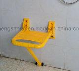 Cadeira médica de banho anti-bacteriana médica com duche Equipamentos médicos