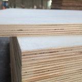 Bois de contre-plaqué de faisceau de peuplier pour la caisse d'emballage de palette (21X1220X2440mm)