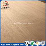 Álamos Core Bintangor / / Okoume Caoba de madera contrachapada comercial