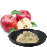 最もよい価格の自然なPhloretinの粉の高性能液体クロマトグラフィー98% Appleのエキス