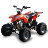 50cc de Vierling ATV van Small Kids Racing (MDL ga002-5)