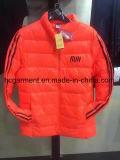 주식에 있는 상품, 아래로 주식 재킷, 남자의 겨울 재킷