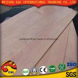 populier van het Gezicht Okoume van 5mm de Rood/Hardhout/het Commerciële Triplex van de Kern van de Eucalyptus