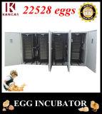 Incubateur automatique d'oeufs de hachure d'oeufs élevés complètement automatiques du taux 20000