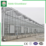 Verdure/giardino/fiori/serra di vetro multi portata dell'azienda agricola