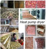 Machine à sécher à l'ail / Machine à sécher au gingembre / Sécheuse à séchage à l'oignon