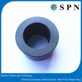 De permanente Aangepaste Magneet van de Motor van het Ferriet Veelpolige Ringen