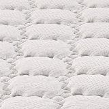 Poly matelas de tissu de jacquard de vente chaude avec le ressort Pocket