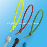 Laço de nylon do fecho de correr da amostra livre para o uso interno