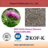 Extracto de cardo de leche / Silymarin, protege el hígado, Anti-Oxidantion