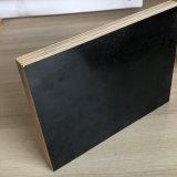 La pellicola Shuttering del pioppo della betulla di memoria commerciale del legno duro ha affrontato il materiale da costruzione del compensato marino del compensato
