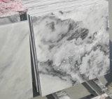 Azulejos de mármol grises de las losas de mármol grises nubladas