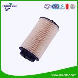 La Chine usine automobile de l'élément de filtre à carburant E500Kp02 D36 pour le benz